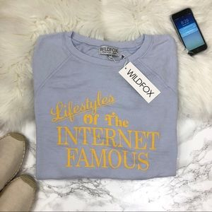 Wildfox Sweaters - Wildfox Internet Famous Sommers Sweater